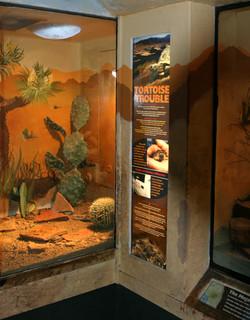 Santa Barbara Zoo Backlit Signage