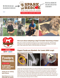 Spark Rescue Home page