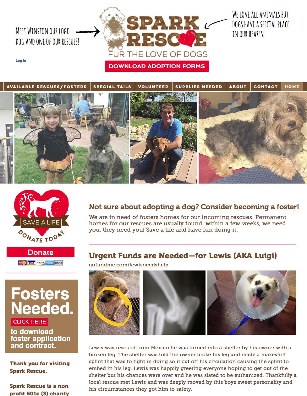 Spark Rescue website design
