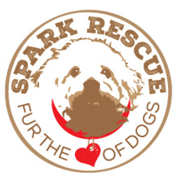 SPARK_RESCUE_LOGO_ROUND_OUTLINED.jpg