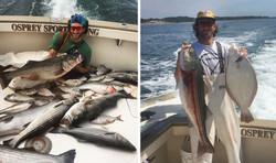 Striper & Fluke fishing