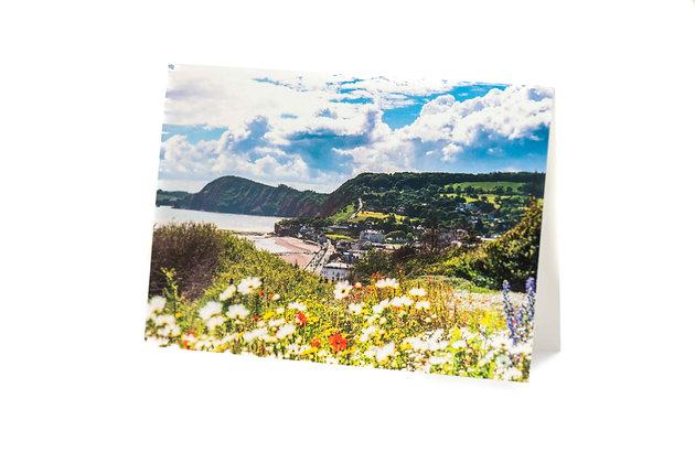 Alma Fields, Sidmouth, Devon A6 Card