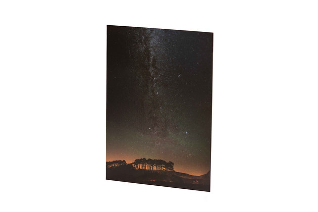 Iconic Firs & Milky Way, Budleigh Salterton, Devon A6 Card