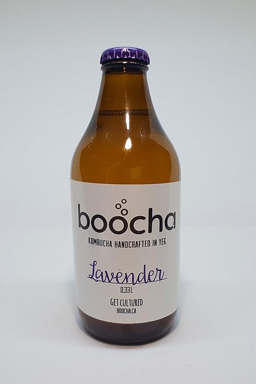 Kombucha - Lavender