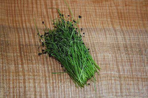 Micro Onion - 60g, organic