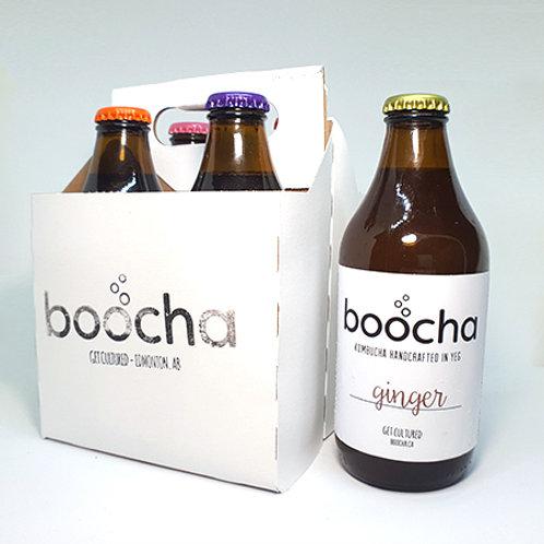 Kombucha - 4 sample pack