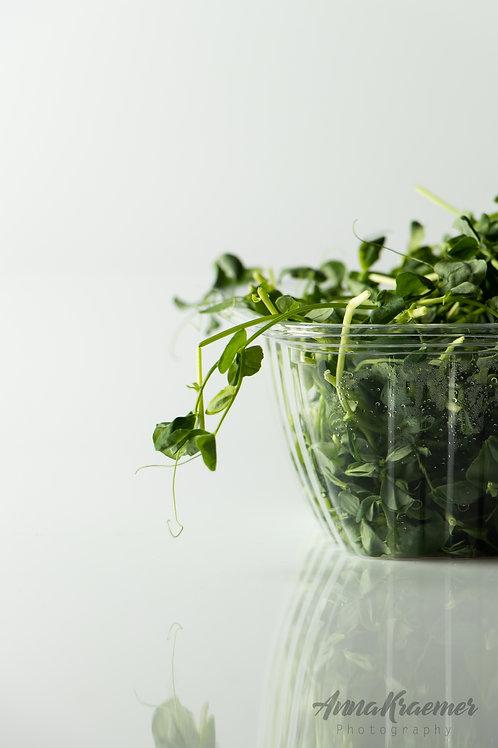 Pea Shoots - 1/2 lb, organic