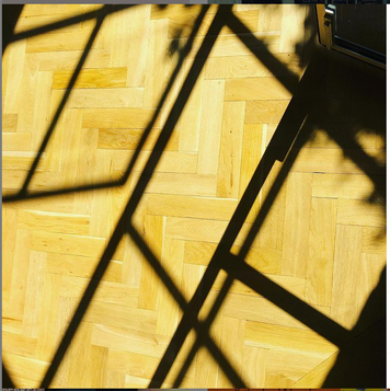 @kitdewaal on Instagram -  September light, study floor #autumn #shadows #amwriting