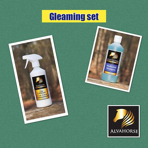 Gleaming Bundle 1Ltr.