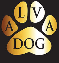 blank-dog-banner.jpg
