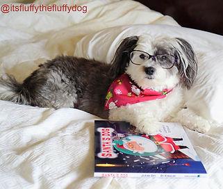 _itsfluffythefluffydog  2a_edited.jpg