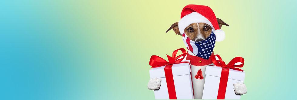 Shop_Xmas dog_with bandana.jpg