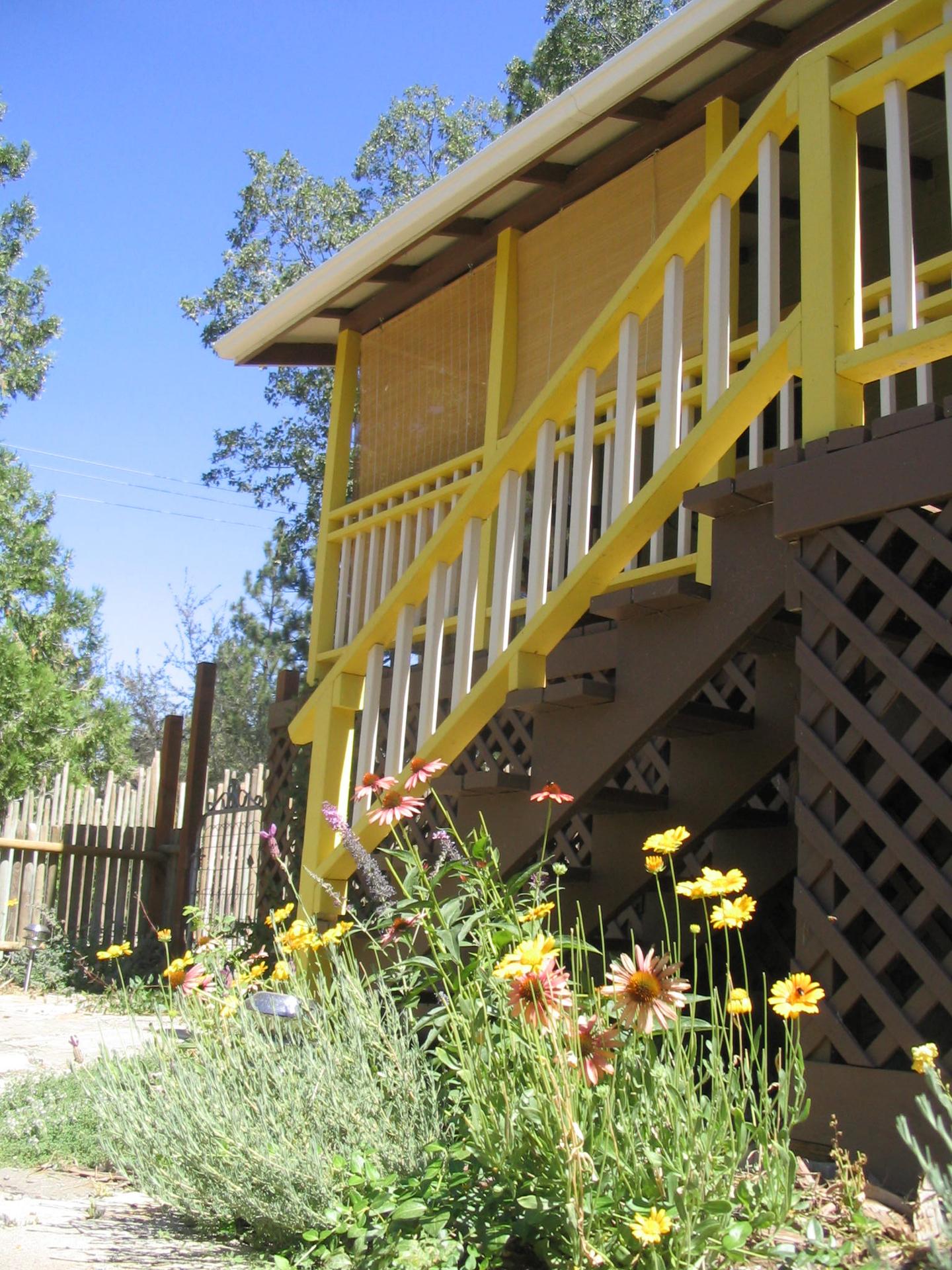 fivespot front garden