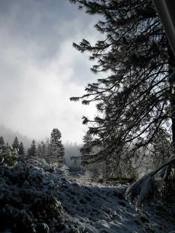 winter at fivespot 2