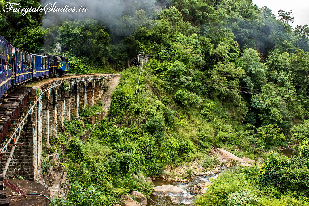 The train goes through thick forest with stream of water flowing seen number of times