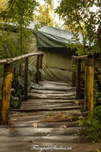 Gardens_Fern Creek Kodaikanal_Fairytale Travels (51)