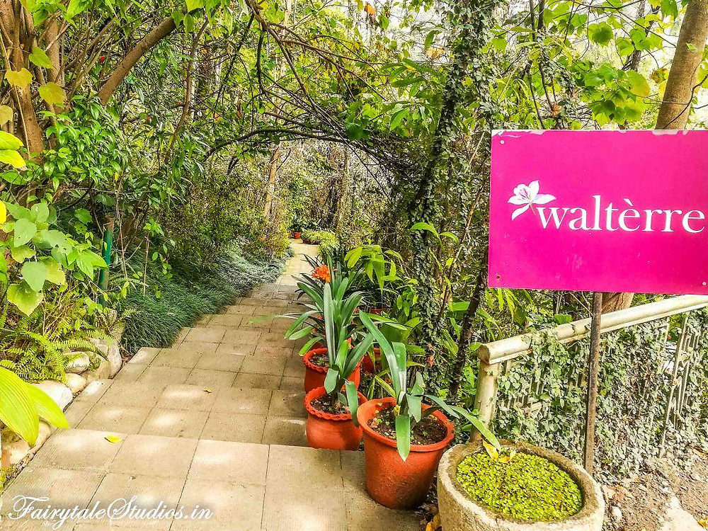 Walterre is a boutique homestay and a recommended place to stay in Dehradun