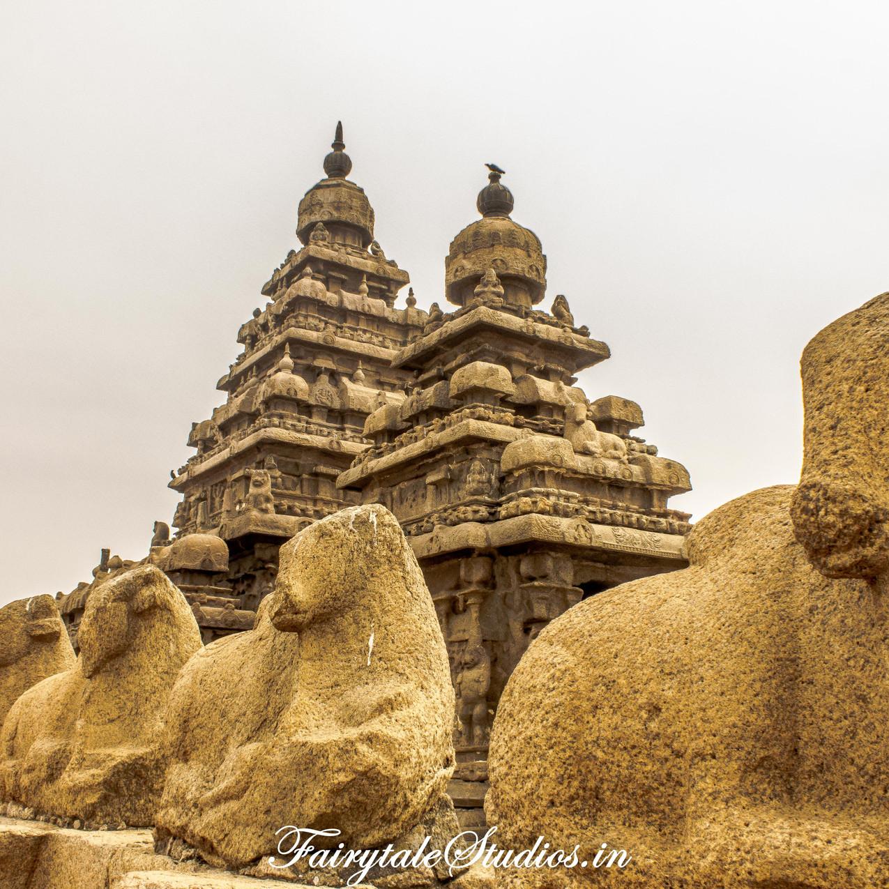 Seashore Temple_Mahabalipuram_Fairytale Travel Blog (4)