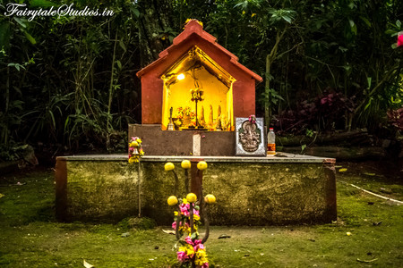 Gardens_Fern Creek Kodaikanal_Fairytale Travels (22)