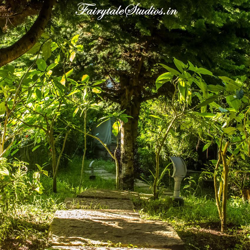 Gardens_Fern Creek Kodaikanal_Fairytale Travels (43)