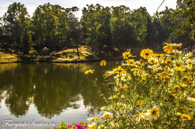 Wards Lake_Shillong travel guide_Meghalaya Odyssey_Fairytale Travels (8)