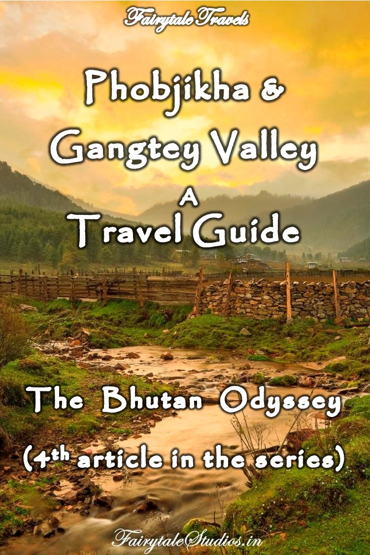 Read our 4th article of the series 'The Bhutan Odyssey' where we take you through Phobjikha valley, the black necked cranes and the village life