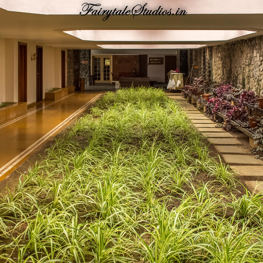 Lobby_The Carlton Kodaikanal_Fairytale Travels (13)