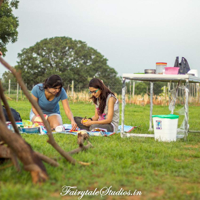 Fairytale Travels_Sids Farm (57)