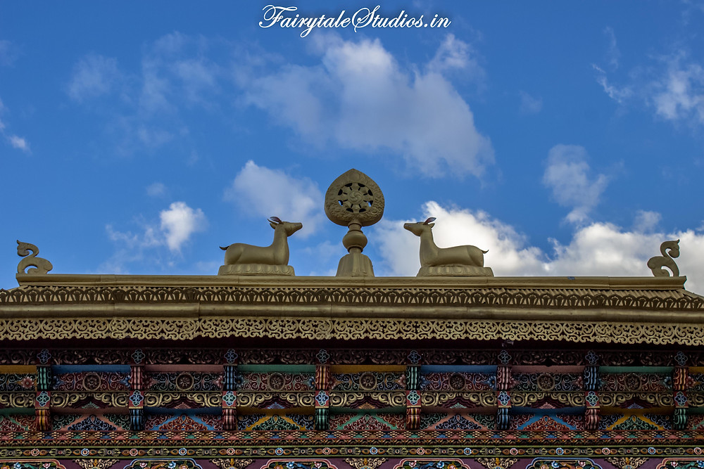 At Thiksey Monastery in Leh (The Zanskar Odyssey)