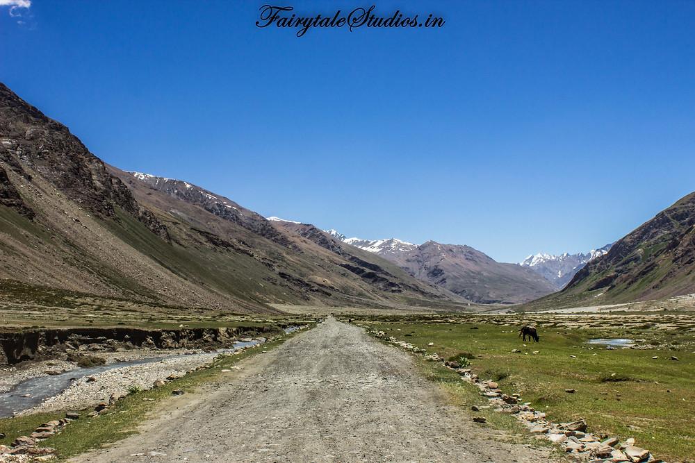 On the way to Padum, Zanskar (The Zanskar Odyssey Travelogue)