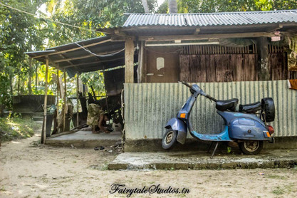 Neil Island Travel Guide_The Andaman Odyssey_Fairytale Travels (16)