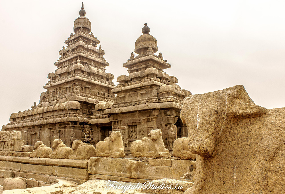 Sea Shore temple at Mahabalipuram, Tamil Nadu is a major attraction for travelers