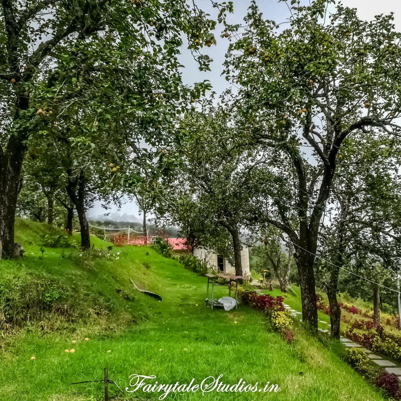 Property_Pear County Kodaikanal_Fairytale Travels (25)