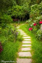 Gardens_Fern Creek Kodaikanal_Fairytale Travels (18)