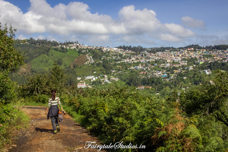 Trek_Pear County Kodaikanal_Fairytale Travels (12)
