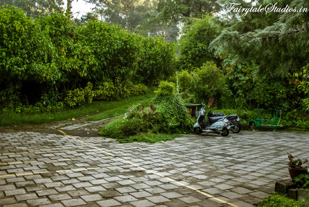 Gardens_Fern Creek Kodaikanal_Fairytale Travels (35)