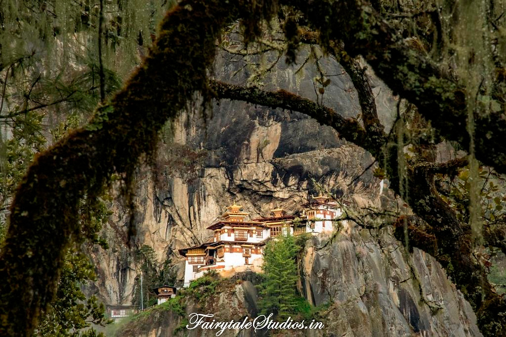 Taktsang perched on the edge of a hill seen through forest trees