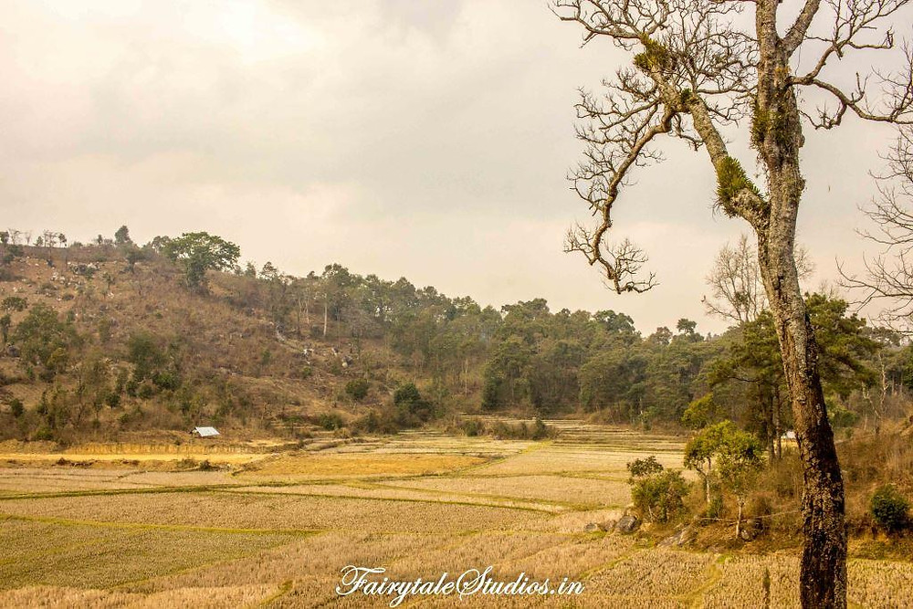 Countryside fields in Jaintia Hills