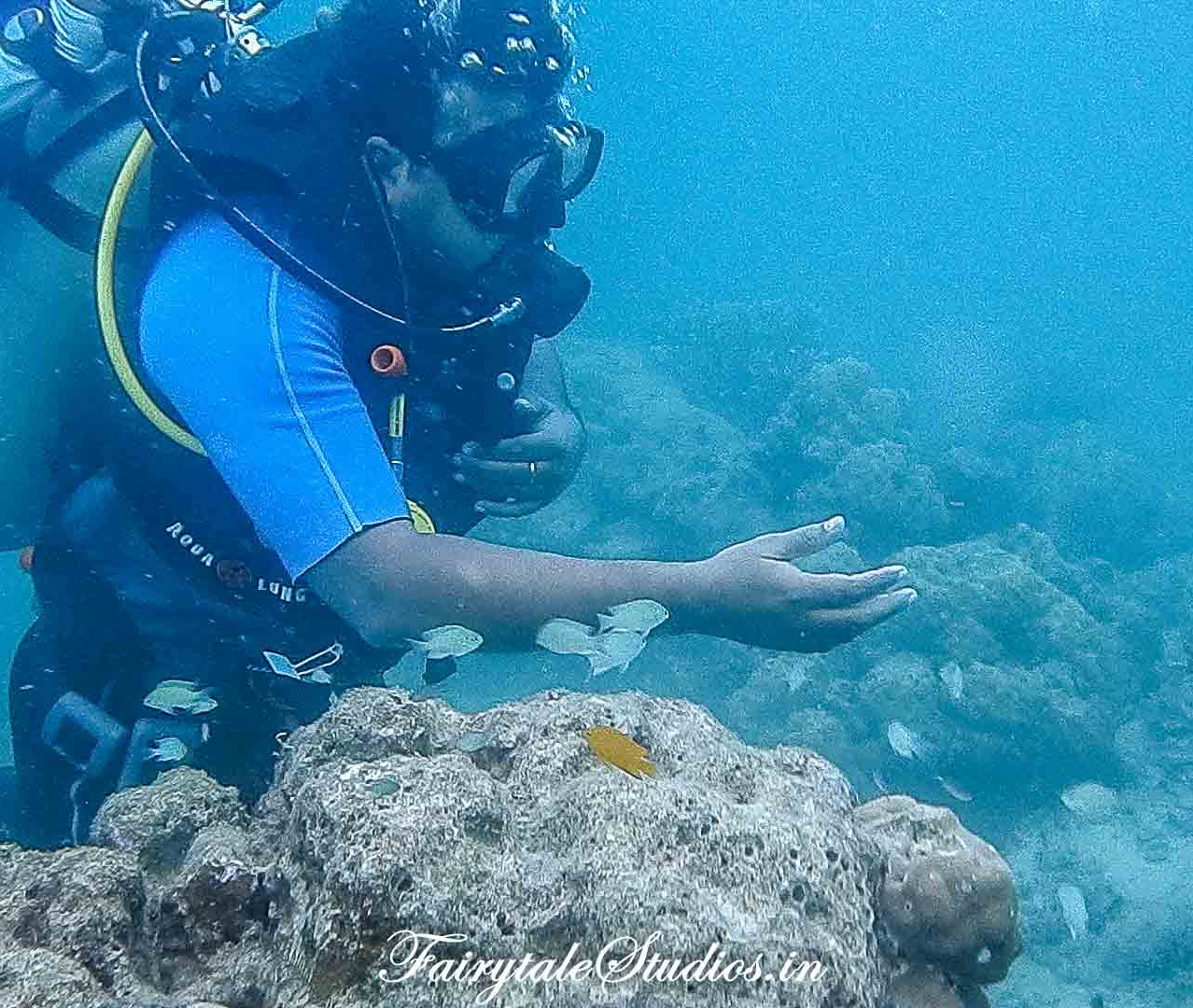 Under water_Scubalov_The Andaman Odyssey_Fairytale Travels (40)