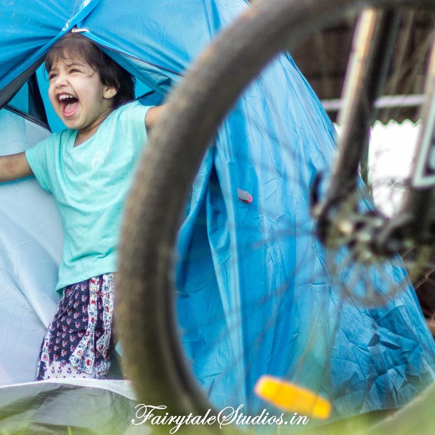 Fairytale Travels_Sids Farm (48)