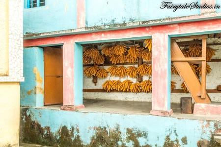 Sainji corn village_Offbeat Mussoorie_Fa