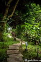 Gardens_Fern Creek Kodaikanal_Fairytale Travels (27)