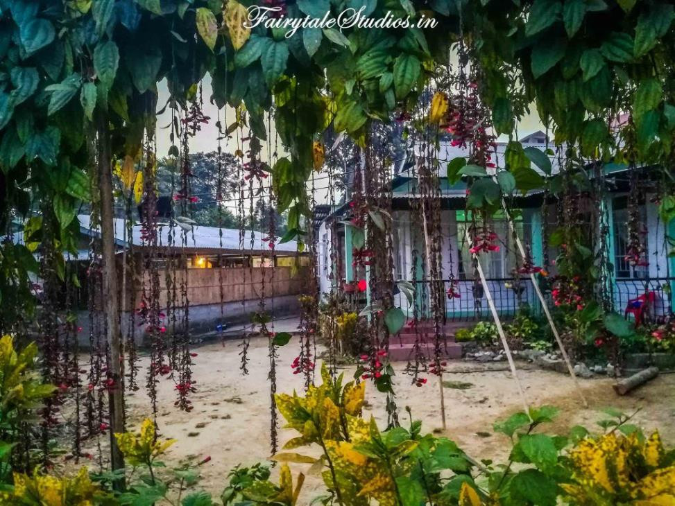 Beautiful Bougainvillea in houses of Mawlynnong