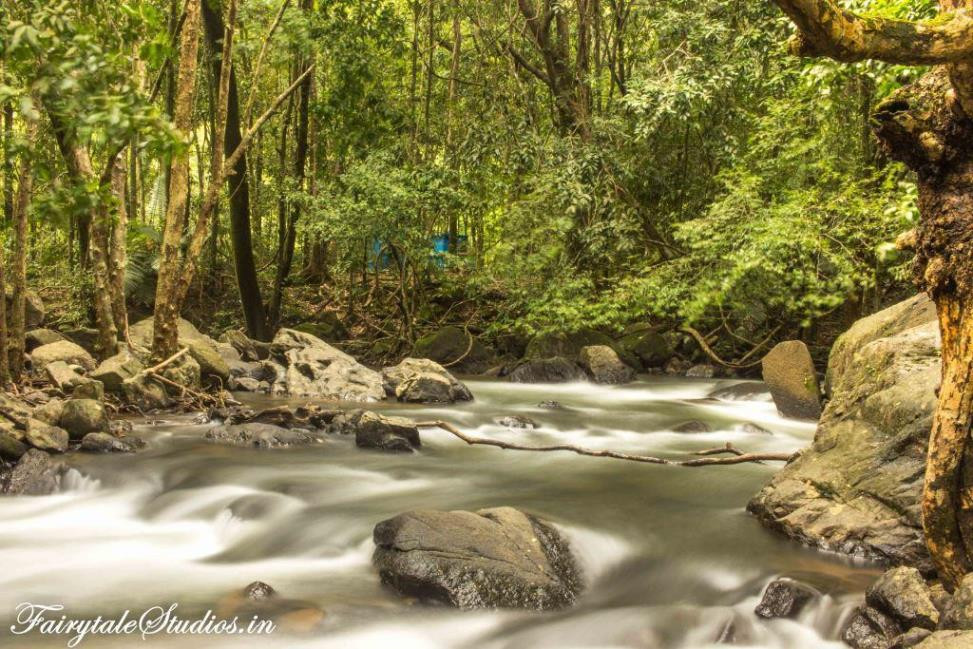Lovely Streams around base of Dudhsagar waterfalls, Goa - India