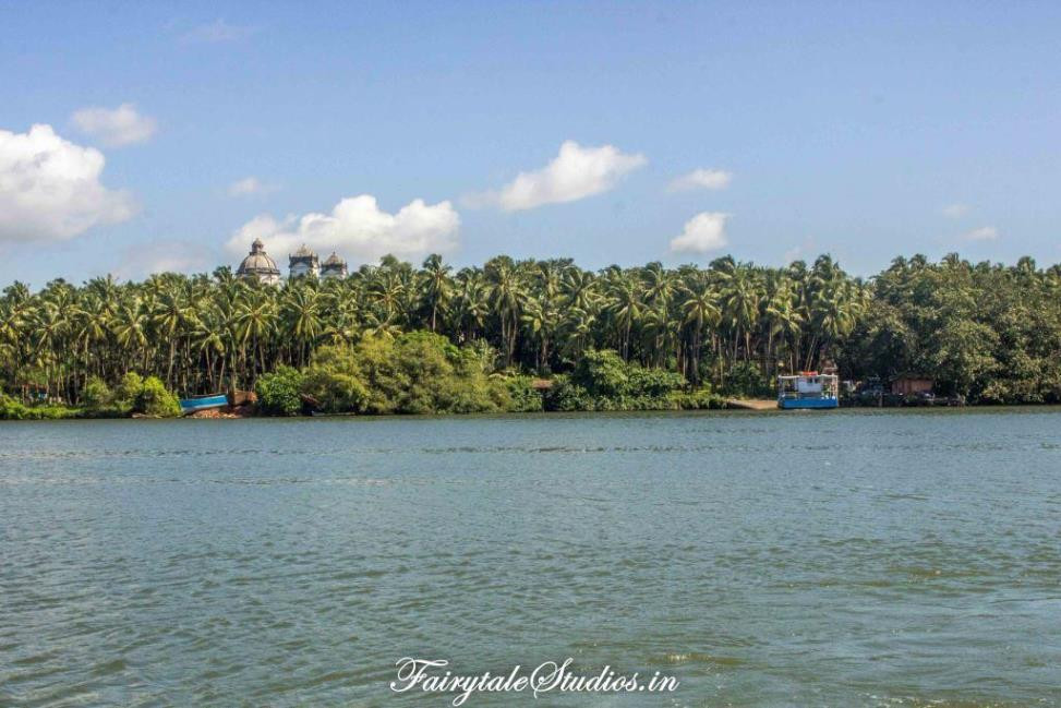 Divar Island as seen from the ferry point at mainland Goa