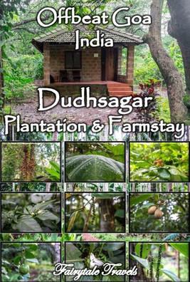 Dudhsagar Plantation farmstay, Goa - India