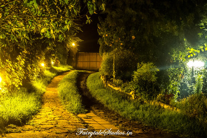 Night_Fern Creek Kodaikanal_Fairytale Travels (16)