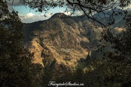 Jabarkhet Nature Reserve_Offbeat Mussoor