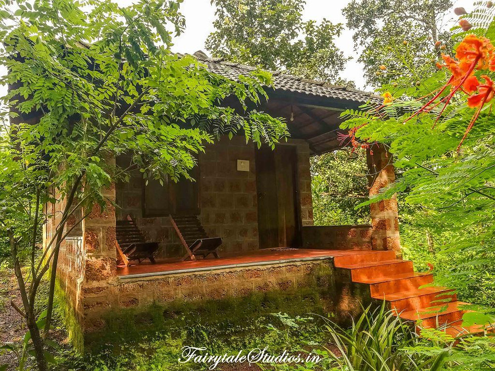Dudhsagar Plantation provides lovely stay near Dudhsagar falls and is highly recommended