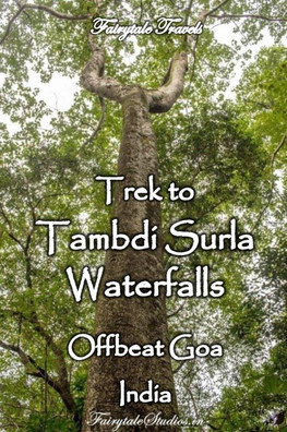 Tambdi Surla waterfalls, Goa - India